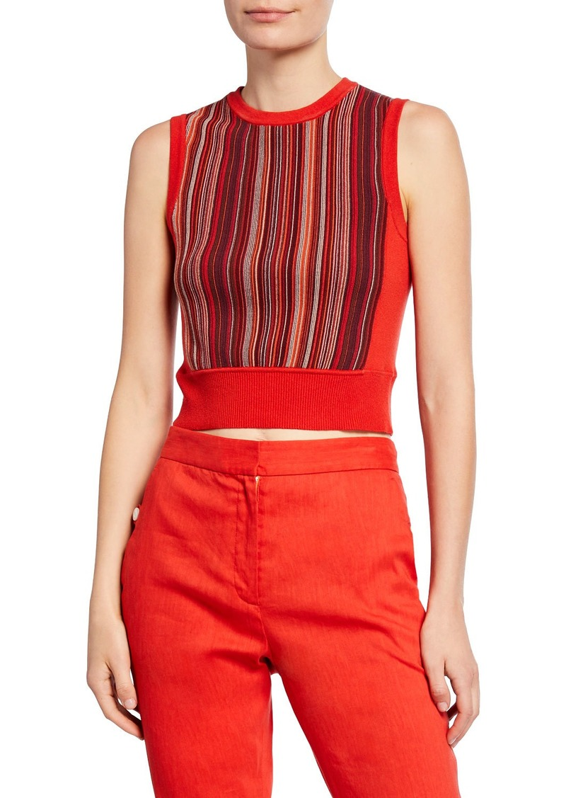 rag & bone Lisse Striped Crop Tank Top