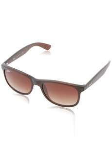Ray-Ban RB4202 607313 Andy Non-Polarized Sunglasses /Brown Gradient