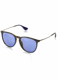 Ray-Ban RB4171F Erika Round Asian Fit Sunglasses