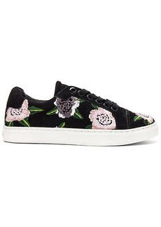 Rebecca Minkoff Bleecker Floral Embroidered Sneaker in Black. - size 10 (also in 6,6.5,7.5,8,8.5,9,9.5)