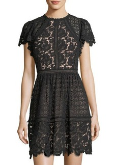 Rebecca Taylor Short-Sleeve Mixed-Lace Fit & Flare Dress