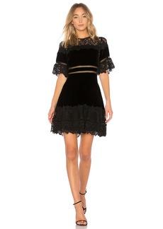 Rebecca Taylor Velvet & Lace Dress