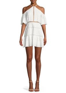 Red Carter Tomey Cold-Shoulder Embroidered Dress