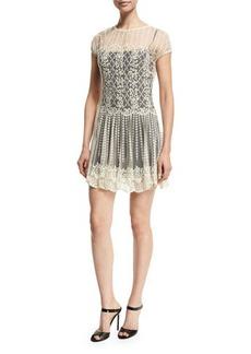 RED Valentino Basket & Floral Embroidered Dress