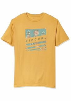 Rip Curl Men's T-Shirt  S