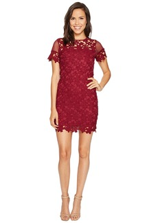 ROMEO & JULIET COUTURE Short Sleeve Mesh Lace Dress