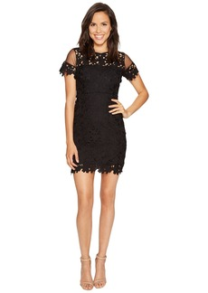 ROMEO & JULIET COUTURE Short Sleeve Mesh Lace Dress