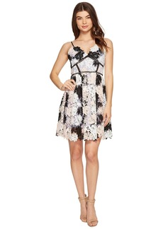 Romeo & Juliet Couture Strap Two-Tone Lace Dress