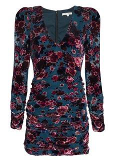 Ronny Kobo Floral Velvet Burnout Ruched Mini Dress