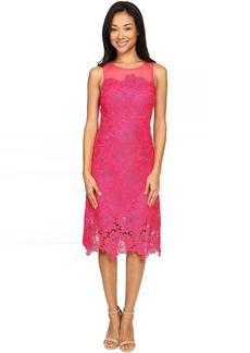 rsvp Alsace Lace Dress