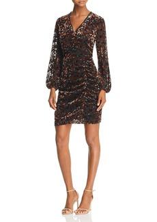 Sam Edelman Velvet Burnout Dress