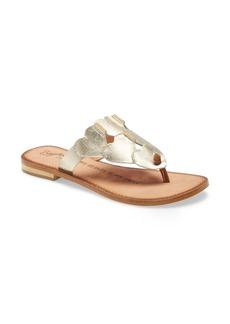Seychelles Rejuvenated Flip Flop (Women)
