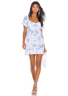 Show Me Your Mumu Della Mini Dress