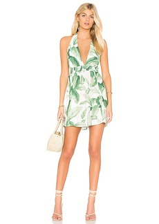 Show Me Your Mumu Island Mini Dress