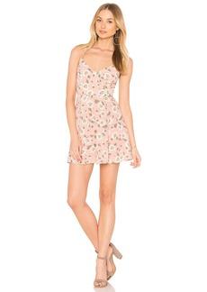Show Me Your Mumu Victoria Mini Dress