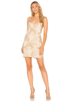 Show Me Your Mumu Vivienne Slip Dress