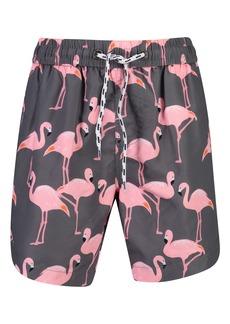 Snapper Rock Flamingo Social Swim Trunks (Toddler & Little Boy)