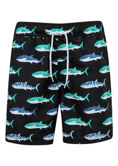 Snapper Rock Shark Swim Trunks (Toddler Boys, Little Boys & Big Boys)