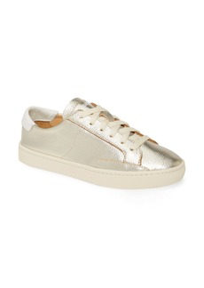 Soludos Ibiza Metallic Lace-Up Sneaker (Women)