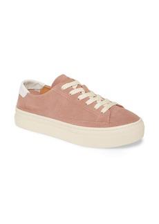Soludos Ibiza Platform Sneaker (Women)