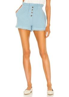 Something Navy Ryan Paperbag Shorts