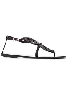 Sophia Webster Butterfly thong sandals