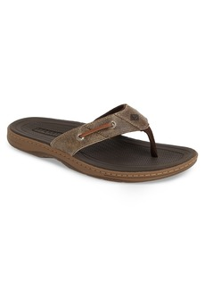 Sperry Top-Sider Sperry 'Baitfish' Sandal (Men)
