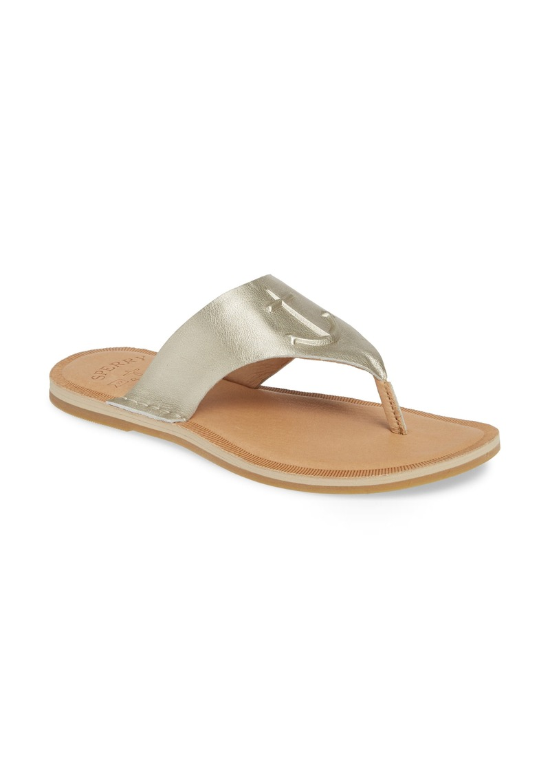Sperry Top-Sider Sperry Seaport Flip Flop (Women)