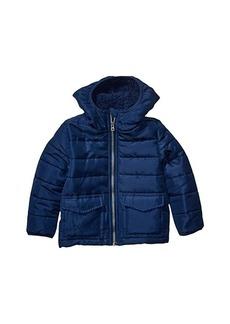 Splendid Hooded Puffer Jacket (Toddler/Little Kids/Big Kids)