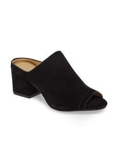 Splendid Danica Slide Sandal (Women)