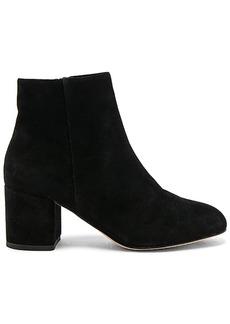 Splendid Daniella Bootie in Black. - size 10 (also in 6,7.5)