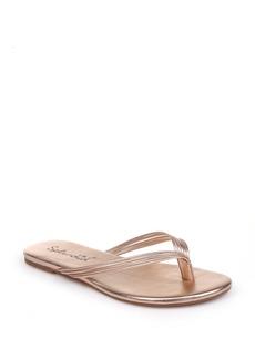 Splendid Shyanna Strappy Flip Flop (Women)