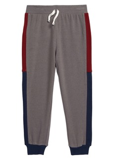 Splendid Tricolor Jogger Pants (Toddler Boys & Little Boys)