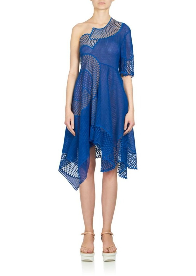 Stella McCartney Embroidered Mesh & Lace One-Shoulder Dress