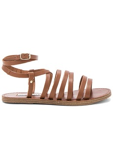 Steve Madden Gallia Sandal in Brown. - size 10 (also in 6,6.5,7,7.5,8,8.5,9,9.5)