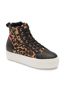 Steve Madden Highway High Top Sneaker (Women)