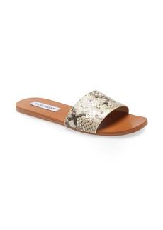 Steve Madden Nikini Slide Sandal (Women)