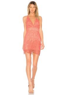 Stylestalker Amelie Mini Dress