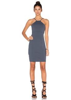 Susana Monaco Flora Dress