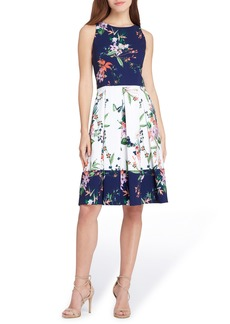 Tahari Colorblock Floral Crepe Fit & Flare Dress