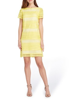 Tahari Stripe Lace Sheath Dress