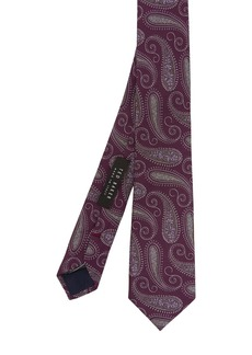 Ted Baker Carash Paisley Silk Tie