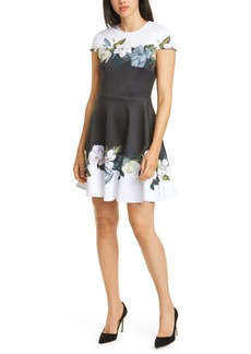 Ted Baker London Louva Opal Floral Print Skater Dress