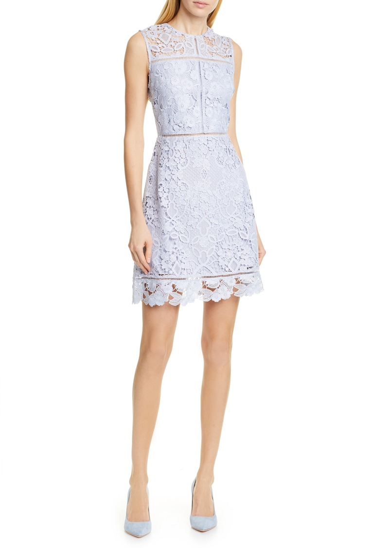 a23231d2fa Ted Baker Ted Baker London Primrose Lace Dress Now $236.98