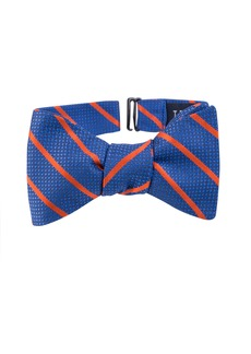 Ted Baker London Stripe Silk Bow Tie