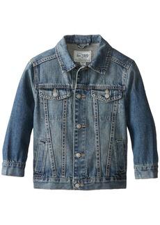 The Children's Place Little Boys' Basic Denim Jacket