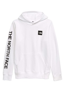 The North Face Logowear Hooded Pullover (Big Boy)
