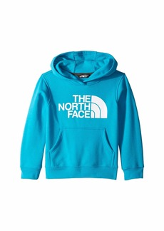 The North Face Logowear Pullover Hoodie (Little Kids/Big Kids)