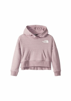 The North Face Recycled Materials Pullover Hoodie (Little Kids/Big Kids)