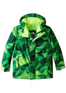 The North Face Darten Insulated Jacket (Little Kids/Big Kids)